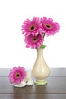 Pink Gerbera in vase and white rocks