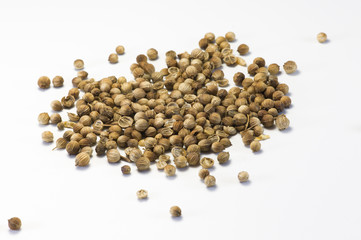 Dried Seeds of Cilantro