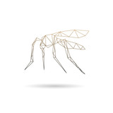 Mosquito abstract isolated on a white backgrounds