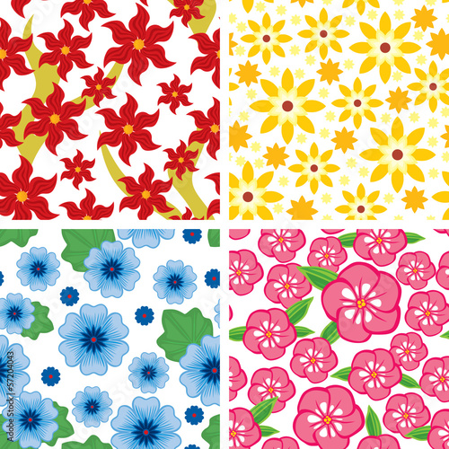 Set floral seamless pattern
