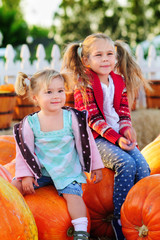 little girl on a pumpkin patch