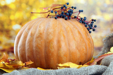 pumpkin and autumn leaves, on yellow background