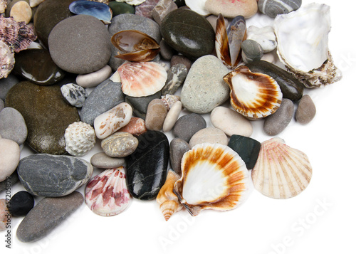 Close up of sea stones and shells