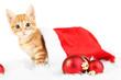 Cute little red kitten in Santa hat isolated on white