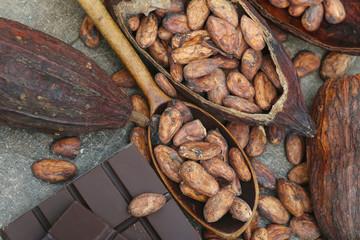 Kakaobohnen mit Kakofrucht