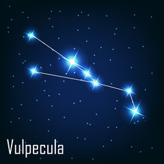 "The constellation "" Vulpecula"" star in the night sky. Vector ill"