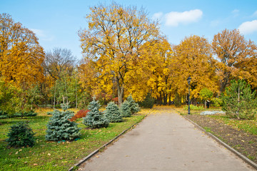 Sunny autumn day in the central park,  Kharkiv, Ukraine