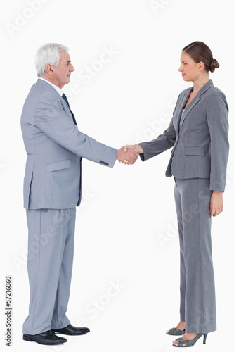 Side view of businesspartner shaking hands