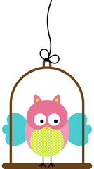 Little Owl in Bird Cage