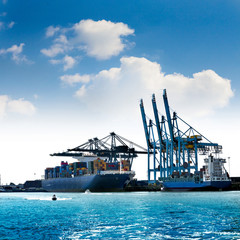 Cargo sea port. Sea cargo cranes.
