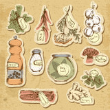 Spices and herbs. Set of elements for design.