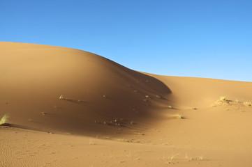 Sand hill in the desert