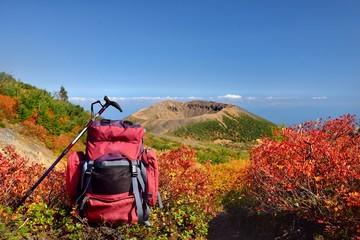 秋晴れの山を歩く