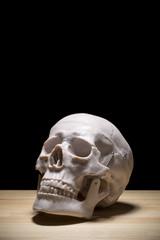 黒背景に頭部の人体模型
