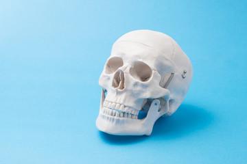 水色の背景に頭蓋骨
