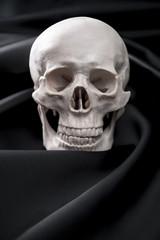 黒色の布と髑髏の模型