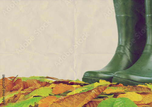 paper boots leaves