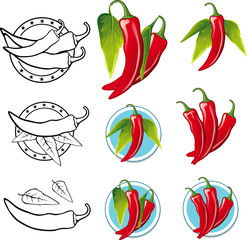 Chili Pepper illustration - Illustration