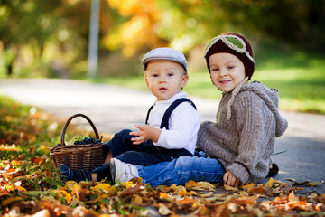 Brothers in a park with a basket of fruits