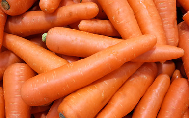 Close up on carrot