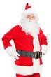 Smiling Santa Claus posing