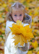 Little girl gives fallen leaves to someone.