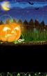 Evil Jack o Lantern