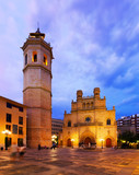 Cathedral of Saint Mary at Castellon de la Plana in night