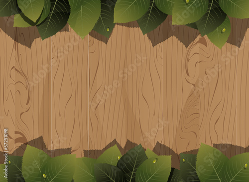 Wooden fence and lush foliage
