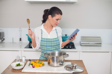 Focused gorgeous woman wearing apron using tablet while cooking