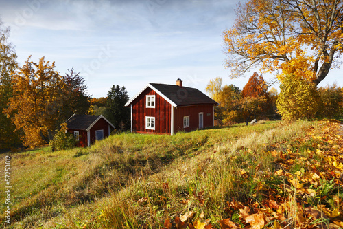 old red cottage surrounded by autumn leaves, rural setting