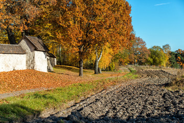 Swedish countryside in Ostergotland during autumn