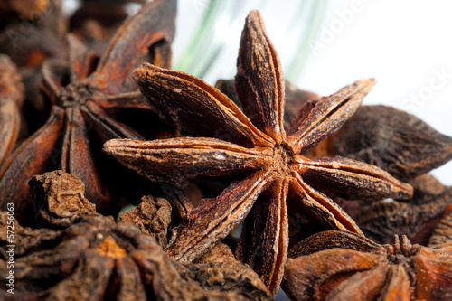 Star Anise close up on a  white background