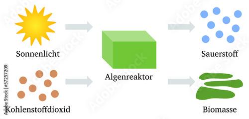 Algenreaktor