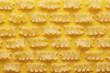 Raw mafalda pasta texture