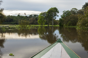 Amazon River from boat