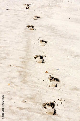 Footprints in the sand on the beach