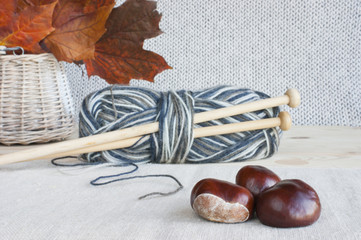 Wool, knitting needles, autumn leaves, horse chestnuts.