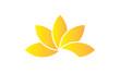 Lotus jaune