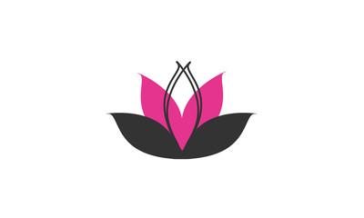 Concept lotus rose