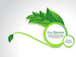 Eco Banner With Leaf