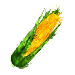 Corn cob  made of colorful splashes on white background
