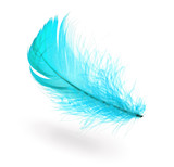 Light blue feather