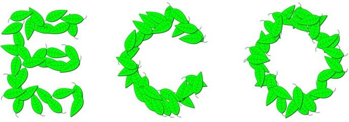 ECO vert de feuilles