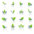 Set of green leaf icons and graphics.