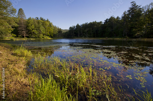 Pond at Wild Acres Park in Pittsfield, Massachusetts