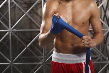 Boxer. Боксер