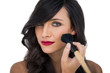 Glamorous brunette applying blusher on her cheek