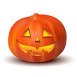 Halloween Pumpkin isolated on white in vector