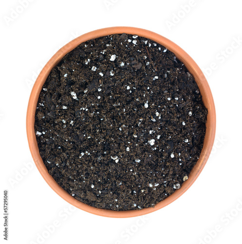 Organic potting soil in clay pot